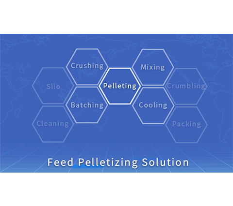 What is the composition of feed processing machinery in piglet feed production line?