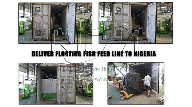 floationg fish feed line to nigeria